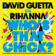 David Guetta Feat. Rihanna Who's That Chic