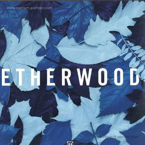 Etherwood - Blue Leaves (med school)