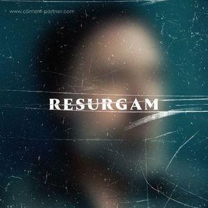 Fink - Resurgan (2LP+MP3) (R'COUP'D / Ninja Tune)