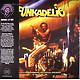 Funkadelic Live  - MEADOWBROOK, ROCHESTER, MICHIGAN