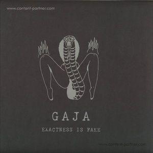 Gaja - Slam006