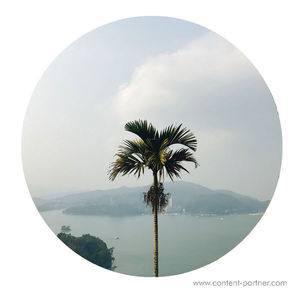 J. Tijn - The Deluge Ep (Lost Palms)