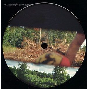 Liem & Eddie Ness - Metronic Disco Fever (Lehult)