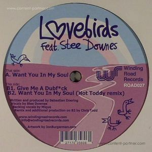 Lovebirds Feat Stee Down - Want In You In My Soul (hot toddy rmx)
