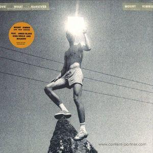 Mount Kimbie - Love What Survives (2LP/Gatefold) (Warp)