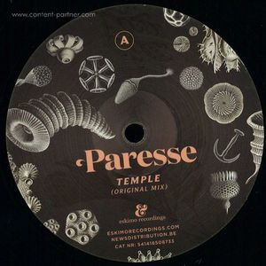 Paresse - Temple (simple Symmetry Remix) (ESKIMO)