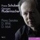 Pludermacher,Georges Klaviersonaten D.664 & 894 Vol.4