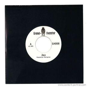 Ponchita Peligros / Helgeland 8bit Squad - Joy - Vinyl Only
