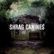 Shrag Canines