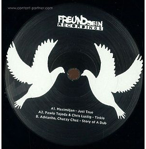 Various Artists - Freundsein 001 (Vinyl Only) (FreundSein)