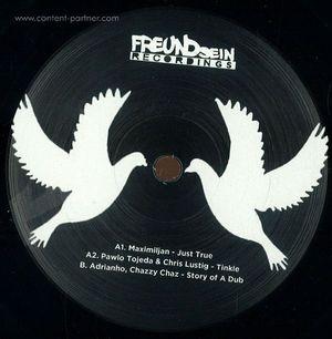 Various Artists - Freundsein 001 (Vinyl Only)