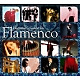 Various Beginner's Guide To Flamenco