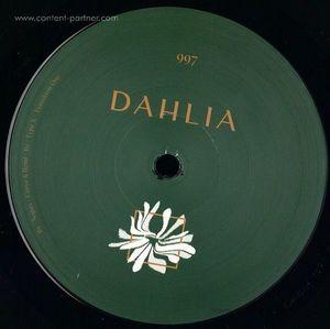 Various - Dahlia997 (Dahlia)