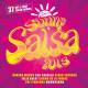 Various Sunny Salsa 2013
