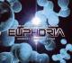 Various The History Of Trance Euphoria