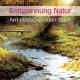 """Vogelstimmen/Naturger""""usche Entspannung Natur-Am Pl""""tschernden Bach"""