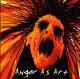 anger as art callous & furor