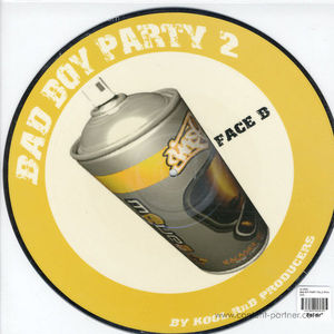 dj kool - bad boy party vol.2