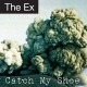 ex,the catch my shoe