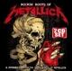 metallica rockin'roots of metallica
