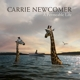 newcomer,carrie a permeable life