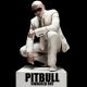 pitbull swagged out