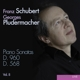 pludermacher,georges klaviersonaten d.568 & 960 vol.8