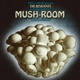 residents,the mush-room