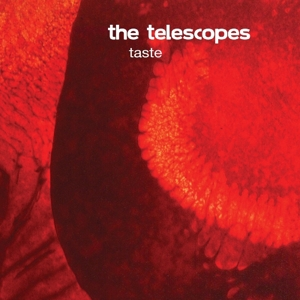 telescopes,the - taste+the perfect needle ep (bomp!)