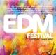 various edm festival vol.4