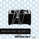 various/michalsky stylenite (compiled by important secrets
