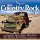 various new country rock vol.10