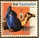 various rai explosion-north african tunes