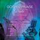 various artist gospel praise duets: many voices,one mes