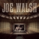 walsh,joe live at the wiltern theater 1991