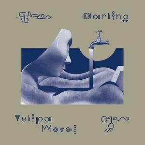 Darling - Tulipa Moves