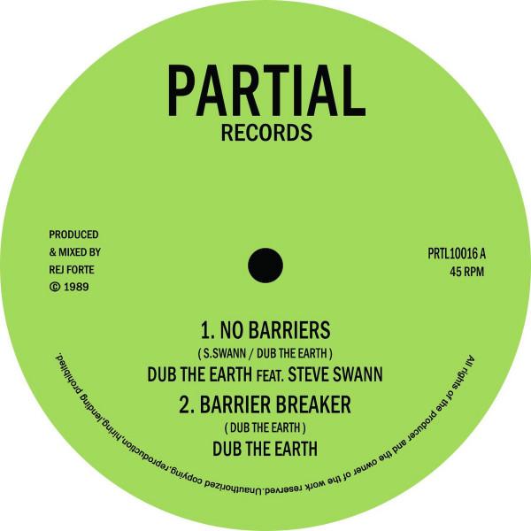 Dub the Earth feat. Steve Swann - No Barriers