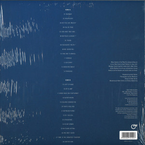 Eric Lau - Examples Vol. 2 (LP) (Back)