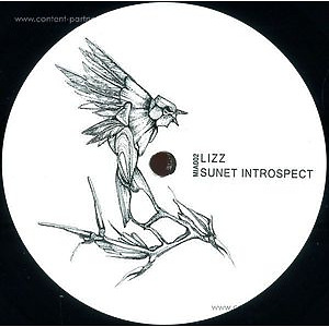 Lizz - Sunet Introspect Ep (Vinyl Only)