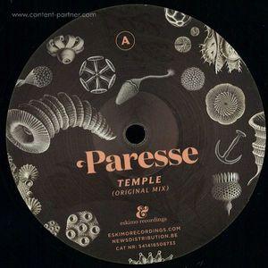 Paresse - Temple (simple Symmetry Remix)