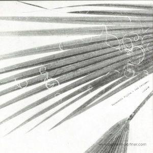 Masayoshi Fujita & Jan Jelinek - Schaum (LP)