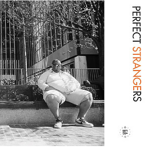 Various Artists - Perfect Strangers