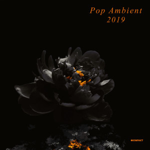 Various Artists - Pop Ambient 2019 (2LP + Download Code)