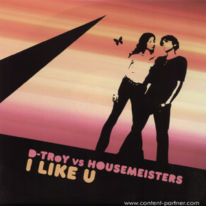 d-troy vs housemeister - i like u