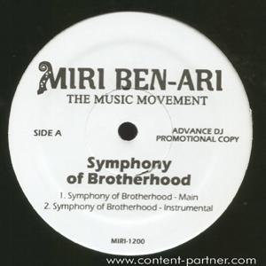 miri ben-ari ft. akon - miss melody