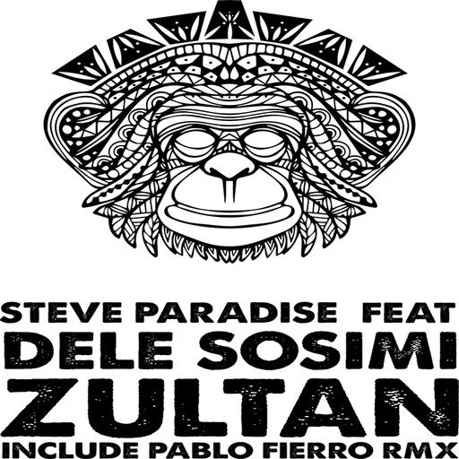 Steve Paradise feat. Dele Sosimi - Zultan