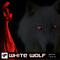 White Wolf by Berny Medina mp3 downloads