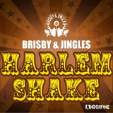 Harlem Shake by Brisby & Jingles mp3 download