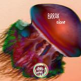 Alone by Brrak mp3 download