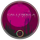Let in Music D by Callendula mp3 download